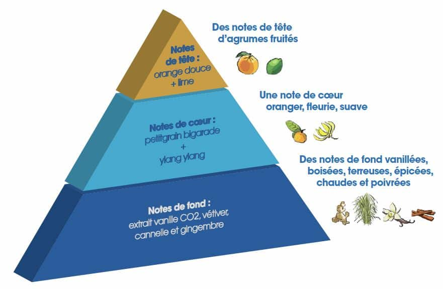 pyramide_stress_aliment