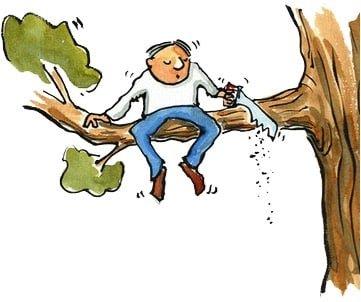 on scie la branche