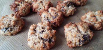 Biscuits noisette chocolat sans gluten sans lactose